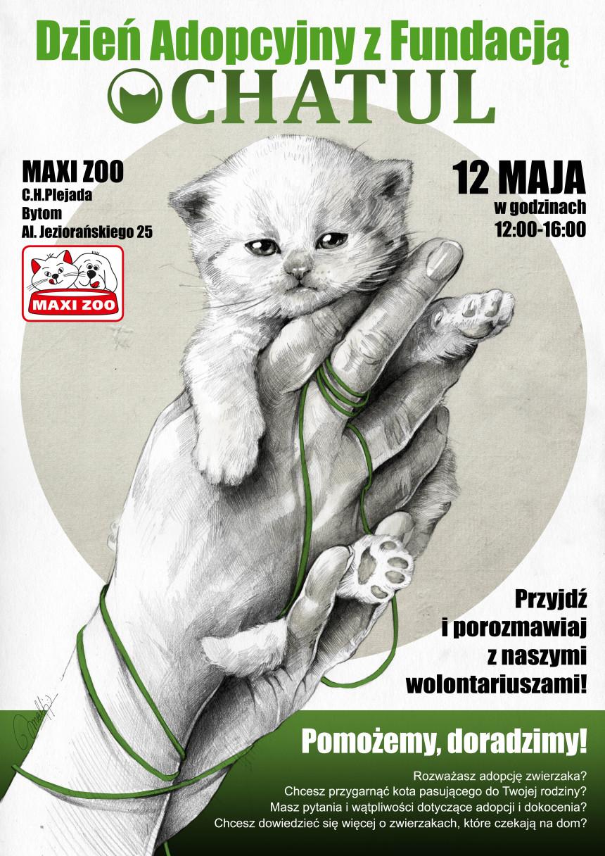 Akcja adopcyjna w MAXI ZOO